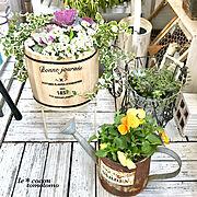 ガーデニング/手作りのお庭♡/いつもいいね!ありがとうございます♪/フォロワーさんに感謝♡…などに関連する他の写真
