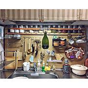 HITACHIの電子レンジ/ペットと暮らす家/家事/タカラスタンダード キッチン/セスキの劇落ちくん…などに関連する他の写真