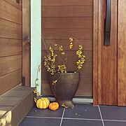 植物のある暮らし/北欧ナチュラル/ハロウィン/リクシルの玄関ドア/Bathroom…などのインテリア実例