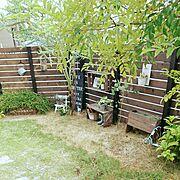 花のある暮らし/ダイソー/リメイク鉢/木工/DIY/セリア…などのインテリア実例
