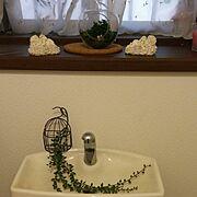 フィギュア/セリア♡/テラリウム/Bathroom…などのインテリア実例