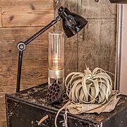 アンティーク/スピーカー/DIY/グラスサウンドスピーカー/骨董品/ホームデコール…などのインテリア実例