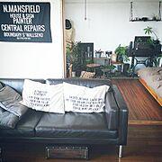 椅子/ヴィンテージ/観葉植物/和室/古道具/生活感…などのインテリア実例