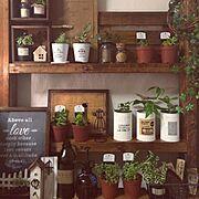 額縁リメイク/すのこ端材リメイク/100均/手作り/観葉植物/フェイクグリーン…などのインテリア実例