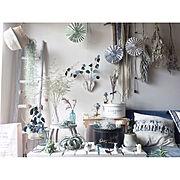 ワイン木箱/エアープランツ/流木ラダー/流木/花のある暮らし/観葉植物…などに関連する他の写真