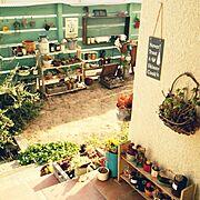 多肉植物/セリア/DIY/ジャンクガーデン/ナンバープレート/Entrance…などのインテリア実例
