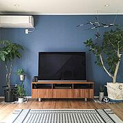 ブルー/zero_cube/unico/グリーンのある暮らし/鉢/インドアグリーン…などのインテリア実例