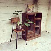 リメイク/収納/観葉植物/ディスプレイ/アンティーク/雑貨…などのインテリア実例