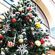 童謡/本物の雪です/クリスマスツリー/フォローすごく嬉しいです♡/いいね!ありがとうございます♪/クリスマス…などのインテリア実例