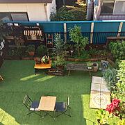 ドリームキャッチャー/インテリア/住まい/植物のある暮らし/観葉植物/IKEA…などに関連する他の写真