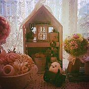 シャビーBOXハウスのインテリア実例写真