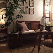 いいね×フォローに感謝です(*´-`)/journal standard Furniture/多肉植物…などに関連する他の写真
