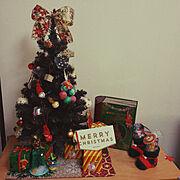 フィカス・バーガンディ/ゴムの木/クロゴムの木/エコカラット/観葉植物…などに関連する他の写真