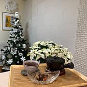 エコカラットDIY/エコカラット/プリンセチア/絵のある暮らし/クリスマスツリー/ファーモールリース…などのインテリア実例