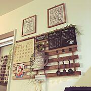 セリア/多肉植物/多肉植物のある暮らし/雑貨大好き♡/雑貨屋さんで買った物/ミルクローバー…などに関連する他の写真