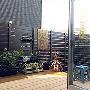 リビング/観葉植物/ヴィンテージ/アーコールチェア/コウモリラン/スツール…などに関連する他の写真