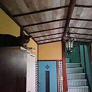 100均/セリア/ウォールライト風/umiumi さんの真似っこ/On Walls…などに関連する他の写真