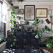 IKEA/3Coins/グレー/ストライプ/リメイクシート/賃貸…などに関連する他の写真