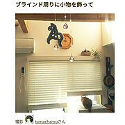 電子ピアノ手作りカバー/ブログ更新しました╰(*´︶`*)╯/ニトリのブラインド…などに関連する他の写真