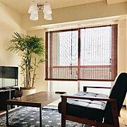 ソファ/一人暮らし/観葉植物/Lounge…などのインテリア実例
