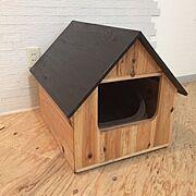 猫トイレ/ネコグッズ/癒し/ハンドメイド/inokaの家具/無垢材…などのインテリア実例