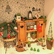 ニトリ/セリア/クリスマス雑貨/クリスマス/みどりのある暮らし/多肉植物…などのインテリア実例