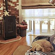 リクシルの折り畳み式ドア/ペットと暮らす家/ニトリ/ロールアップカーテン/ペレットストーブ…などのインテリア実例