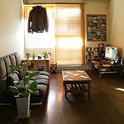 6畳ワンルームのインテリア実例写真