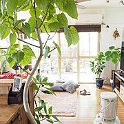 ブログ更新しました♡/セルフリノベーション/グリーンのある暮らし♡/古いおうち。…などのインテリア実例