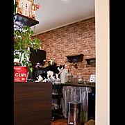 Kitchen/ワイングラスホルダー/吊り棚/観葉植物/Room Clipとの出会いに感謝✳︎/ねこのいる日常…などのインテリア実例