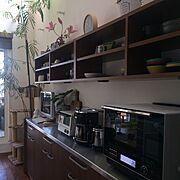 観葉植物/食器棚/緑のある暮らし/北欧/吹抜け/北欧インテリア…などのインテリア実例