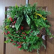 植物のある暮らし/花教室/リビングの壁/日本家屋/クリスマスの飾り/スペインタイルLa.espacio…などのインテリア実例