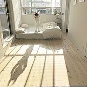 香り/消臭剤/芳香剤/テディベア/寝室/寝室の壁…などに関連する他の写真