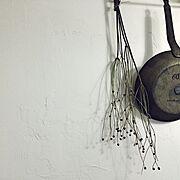 漆喰壁/漆喰壁DIY/ドライ/ドライフラワー/On Walls…などのインテリア実例