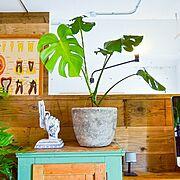 照明/リノベーション/観葉植物/DIY/インダストリアル/リビング…などのインテリア実例