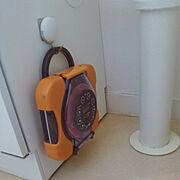 トイレ壁面のインテリア実例写真