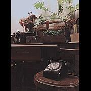 アンティーク家具のある部屋/アンティーク/1969組/チムポン/昭和ポンコツチーム/RC鹿児島…などのインテリア実例