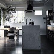 ルイス ポールセン/コンクリートキッチン/宮崎椅子製作所/LouisPoulsen/caravaggio…などのインテリア実例