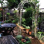 細い庭/10000人の暮らし/ミニバラ/ピエールドゥロンサール/かしの木/手作りデッキ…などのインテリア実例