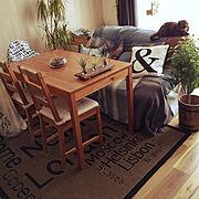 生活雑貨croeso/猫のいる暮らし/観葉植物/ねこと暮らす。/ねこ♡/エアープランツちゃん…などのインテリア実例