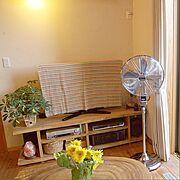Ambassador/扇風機/アンバサダー/ひまわり/テレビボード/観葉植物…などのインテリア実例