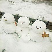 いつもありがとうございます♡*゜/外遊び♪/さむ~い/雪だるま/雪/Entrance…などのインテリア実例
