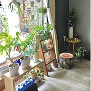 WOODPRO/ニトリ/壁紙屋本舗/DIY/IKEA/ランタンタイルDIY…などのインテリア実例
