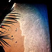 日向ぼっこ/観葉植物/サボテン/多肉植物/エアープランツ/My Desk…などに関連する他の写真
