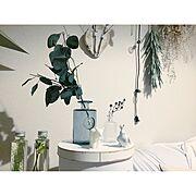 小道/じょうろ/IKEA/手作りの庭/たけのこ/ポタジェ…などに関連する他の写真