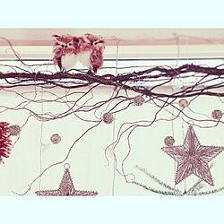 玄関/入り口/クリスマス/ふくろう/手作り/スターオーナメントのインテリア実例 - 2013-11-28 11:47:53