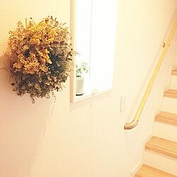 壁/天井/こどもと暮らす。/花のある暮らし/花のある生活/コマンドフック...などのインテリア実例 - 2020-06-24 15:15:49