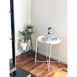 棚/観葉植物のある暮らし/北欧雑貨/HAY kaleido/IKEA...などのインテリア実例 - 2018-03-30 18:02:09