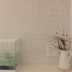 壁/天井/フェイクフラワー/IKEA/水槽/100均...などのインテリア実例 - 2018-08-26 22:55:19