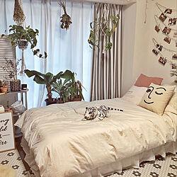 多肉植物/IKEA/ドライフラワー/ツタ系植物/ニトリ...などのインテリア実例 - 2019-10-21 19:20:42